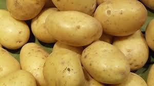 pomme-de terre